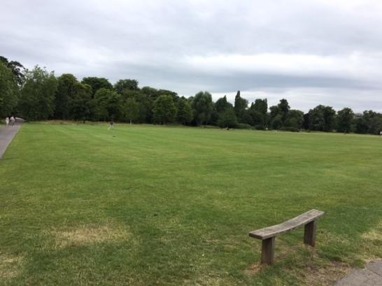 Ballfield 2